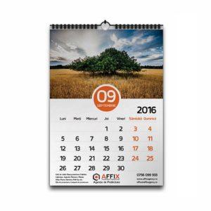 Calendar perete A3